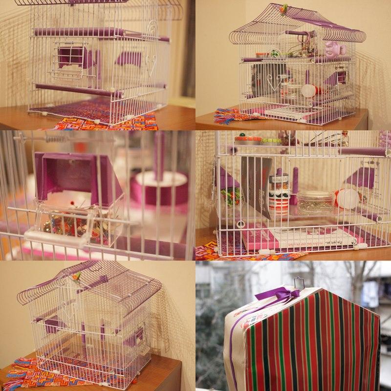 Το κλουβάκι από διάφορες γωνίες και έτοιμο για δώρο!